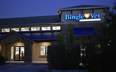 Bingle Vet Clinics Launches Veterinary Practice Franchise Program
