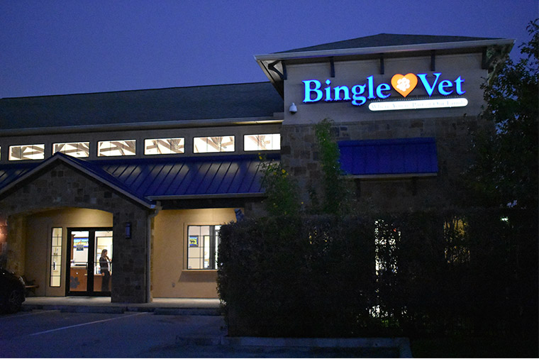 Bingle Vet Clinics Launches Veterinary Practice Franchise Program